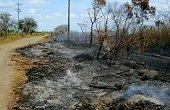 TALLER SOBRE EL CAMBIO CLIMÁTICO EN LA ORINOQUIA REALIZA CORPORINOQUIA ESTA SEMANA
