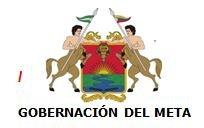 EN EL META FORO REGIONAL DE CONSTRUCCIÓN DE LA POLÍTICA PÚBLICA DE MOVILIDAD