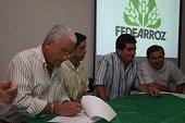 ASAMBLEAS DE FEDEARROZ EN AGUAZUL Y YOPAL