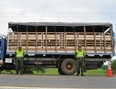 Autoridades anuncian acciones contra el abigeato y el contrabando de ganado en Casanare