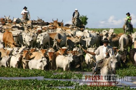 Cantos de Vaquería fueron declarados Patrimonio Cultural Inmaterial de la Nación