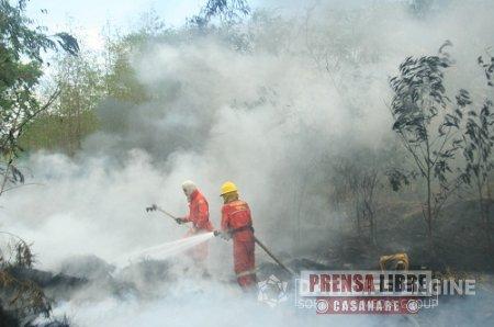80 casos y 800 hectáreas afectadas, han dejado en lo corrido del año incendios forestales