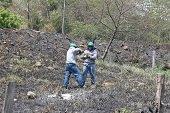 Enerca normalizó servicio de energía en el circuito 34,5, luego de incendio forestal
