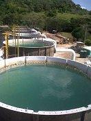 Secretaria de Salud de Yopal hizo precisiones sobre los riesgos por consumir el agua que actualmente se suministra en la ciudad