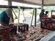 Piscicultores de Paratebueno se capacitan con Corporinoquia