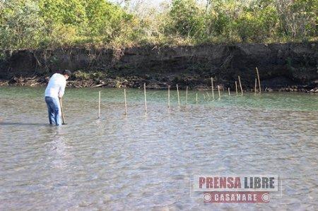 Operativo contra prácticas pesqueras nocivas en el río Pauto