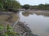 Corporinoquia y Parques Nacionales analizan declarar nuevas reservas naturales en Casanare