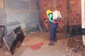 Brote de pulgas en vivienda abandonada en Yopal
