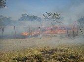 Verano en Casanare deja 45.395 hectáreas consumidas por incendios forestales