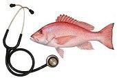 Cuidado con el consumo de pescado durante Semana Santa
