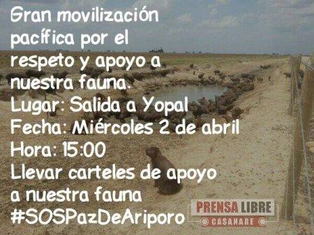 Hoy en Paz de Ariporo Movilización pacífica por emergencia ambiental