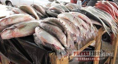 Secretaría de salud hizo recomendaciones sobre consumo de productos derivados de la pesca en Semana Santa
