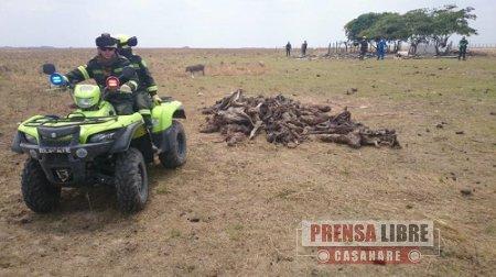 Alcalde de Paz de Ariporo solicitará comisión verificadora para evaluar real magnitud de emergencia ecológica