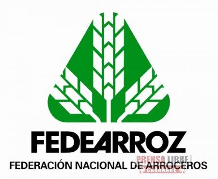 Junta Directiva de Fedearroz sesiona en Aguazul hoy